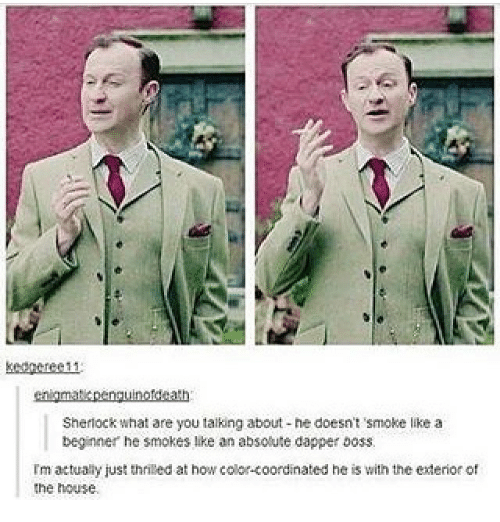 Memes, House, and Sherlock: cnigmatcpengunotdeath  Sherlock whal are you talking about ne doesnt smoke like a  beginner he smokes like an absoute dapper boss  Im actuay just thrited at how color-coordinated he is with the ederior of  the house