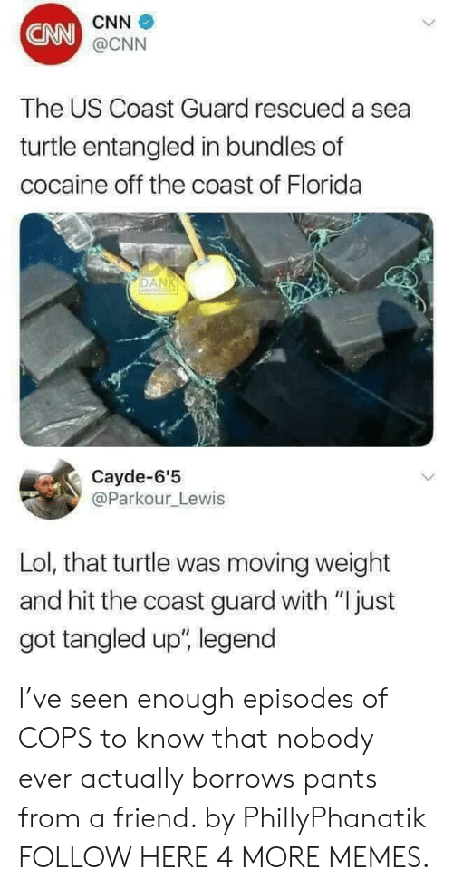 "cnn.com, Dank, and Lol: CNN  CNN  @CNN  The US Coast Guard rescued a sea  turtle entangled in bundles of  cocaine off the coast of Florida  DAN  Cayde-6'5  @Parkour_Lewis  Lol, that turtle was moving weight  and hit the coast guard with ""Ijust  got tangled up"", legend I've seen enough episodes of COPS to know that nobody ever actually borrows pants from a friend. by PhillyPhanatik FOLLOW HERE 4 MORE MEMES."