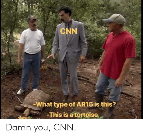 tortoise: CNN  What type of AR15 is this?  This is a tortoise Damn you, CNN.