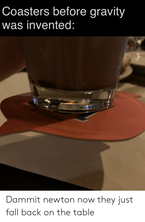 Fall, Reddit, and Gravity: Coasters before gravity  was invented: Dammit newton now they just fall back on the table