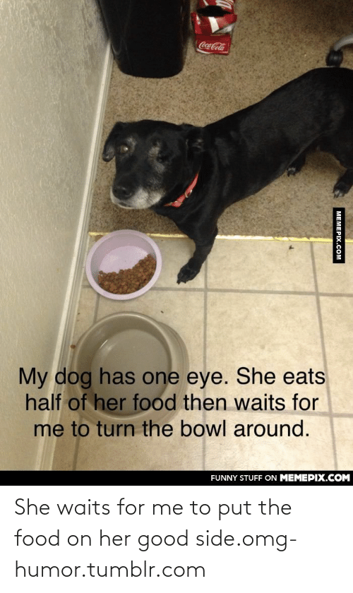 Her Good: Coca-Cola  My dog has one eye. She eats  half of her food then waits for  me to turn the bowl around.  FUNNY STUFF ON MEMEPIX.COM  MEMEPIX.COM She waits for me to put the food on her good side.omg-humor.tumblr.com