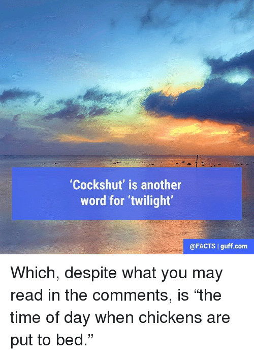 "Facts, Memes, and Time: ""Cockshut' is another  word for twilight  @FACTS l guff.com Which, despite what you may read in the comments, is ""the time of day when chickens are put to bed."""