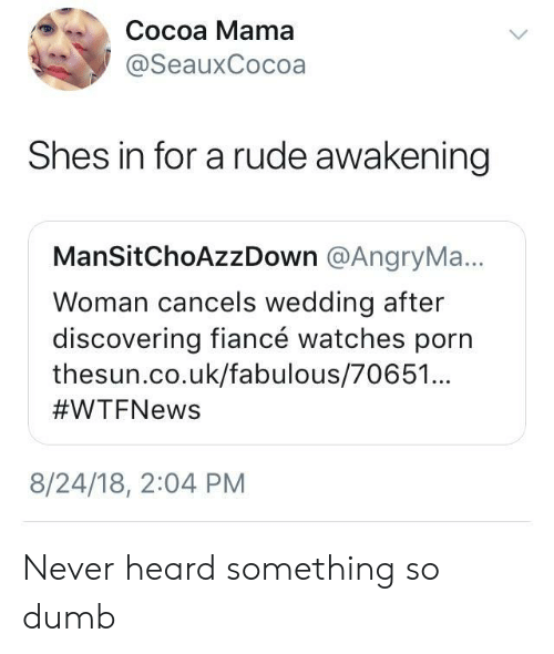 awakening: Cocoa Mama  @SeauxCocoa  Shes in for a rude awakening  ManSitChoAzzDown @AngryMa.  Woman cancels wedding after  discovering fiancé watches porn  thesun.co.uk/fabulous/70651  #WTFNews  9  8/24/18, 2:04 PM Never heard something so dumb