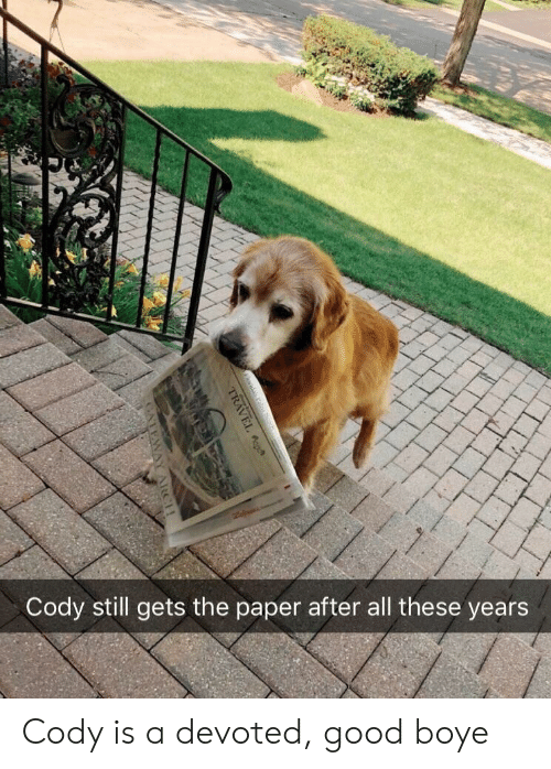 cody: Cody still gets the paper after all these years Cody is a devoted, good boye