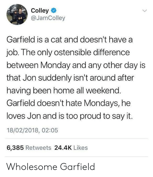 Mondays: Colley  @JamColley  ce  Garfield is a cat and doesn't have a  job. The only ostensible difference  between Monday and any other day is  that Jon suddenly isn't around after  having been home all weekend.  Garfield doesn't hate Mondays, he  loves Jon and is too proud to say it.  18/02/2018, 02:05  6,385 Retweets 24.4K Likes Wholesome Garfield
