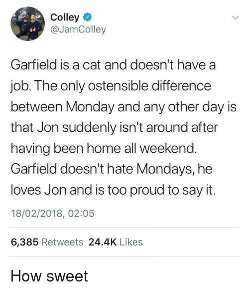 Mondays, Say It, and Home: Colley  @JamColley  Garfield is a cat and doesn't have a  job.The only ostensible difference  between Monday and any other day is  that Jon suddenly isn't around after  having been home all weekend.  Garfield doesn't hate Mondays, he  loves Jon and is too proud to say it.  18/02/2018, 02:05  6,385 Retweets 24.4K Likes How sweet