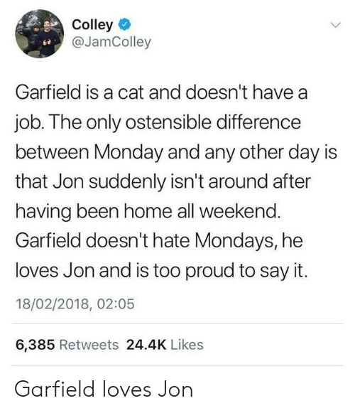 Mondays, Say It, and Home: Colley  @JamColley  Garfield is a cat and doesn't have a  job. The only ostensible difference  between Monday and any other day is  that Jon suddenly isn't around after  having been home all weekend.  Garfield doesn't hate Mondays, he  loves Jon and is too proud to say it.  18/02/2018, 02:05  6,385 Retweets 24.4K Likes Garfield loves Jon