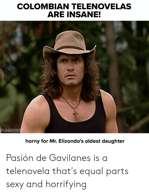 Dank, Horny, and Sexy: COLOMBIAN TELENOVELAS  ARE INSANE!  FUNNYD  horny for Mr. Elizondo's oldest daughter Pasión de Gavilanes is a telenovela that's equal parts sexy and horrifying