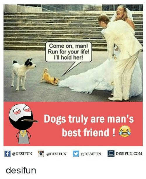 run for your life: Come on, man!  Run for your life!  I'll hold her!  Dogs truly are man's  best friend  @DESIFUN  @DESIFUN  @DESIFUN  DESIFUN COM desifun