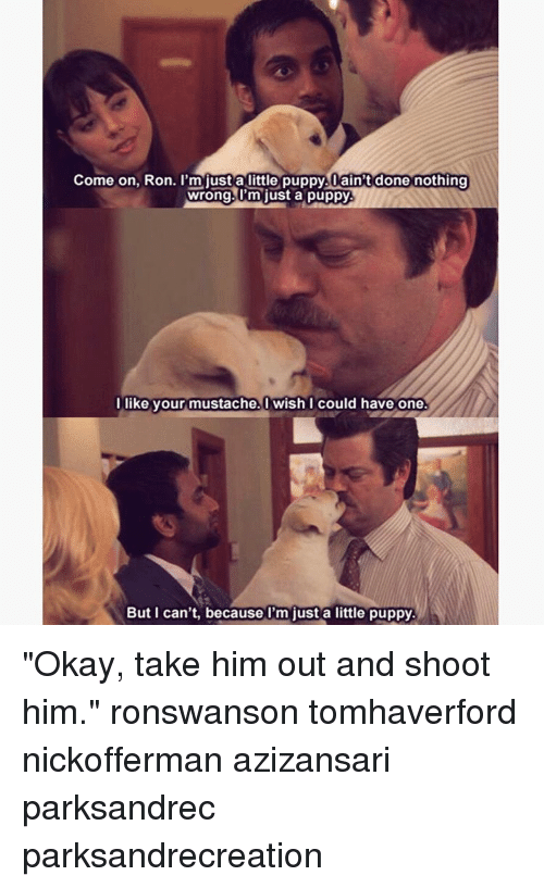 "Memes, Puppies, and Okay: Come on, Ron. I'm just a little puppy. ain't done nothing  wrong. I'm just a puppy  l like your mustache. Wish I could have one.  But can't, because just a little puppy. ""Okay, take him out and shoot him."" ronswanson tomhaverford nickofferman azizansari parksandrec parksandrecreation"