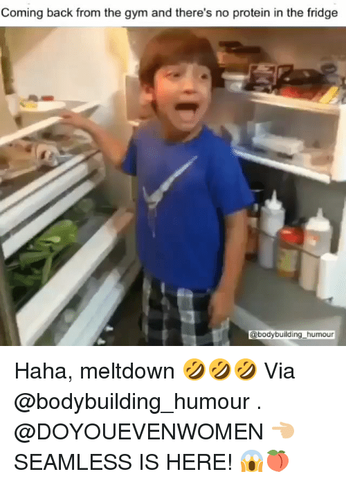 Gym, Protein, and Bodybuilding: Coming back from the gym and there's no protein in the fridge  @bodybuilding_humour Haha, meltdown 🤣🤣🤣 Via @bodybuilding_humour . @DOYOUEVENWOMEN 👈🏼 SEAMLESS IS HERE! 😱🍑