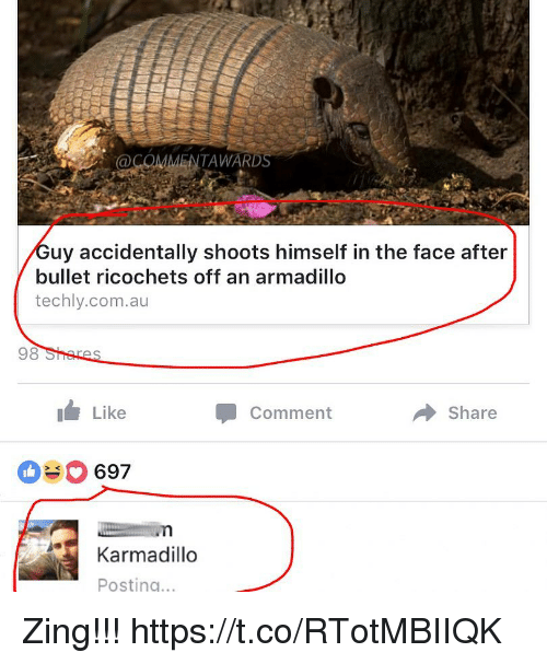 Funny, Com, and Armadillo: COMMENTAWARD  34  uy accidentally shoots himself in the face after  bullet ricochets off an armadillo  techly.com.au  98  Like  Comment  Share  697  Karmadillo  Posting.. Zing!!! https://t.co/RTotMBIIQK