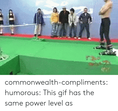 commonwealth: commonwealth-compliments:  humorous:  This gif has the same power level as