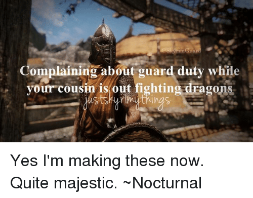 nocturne: Complaining about guard duty while  your cousin is out fighting dragons Yes I'm making these now. Quite majestic.   ~Nocturnal