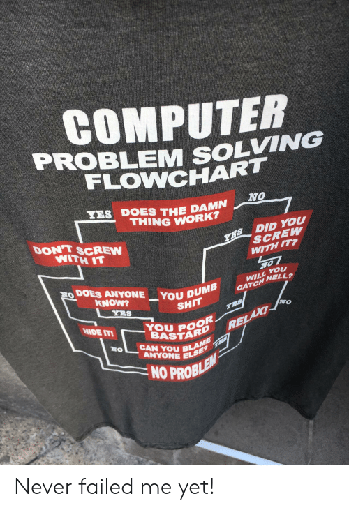Shit, Work, and Computer: COMPUTER  PROBLEM SOLVING  FLOWNCHAR  NO  TES DOES THE DAMN  THING WORK  Y1S DID you  DON'T SCREW  NITH 1T  SCREW  WITH IT?  you  DOES ANYONE-YOUp  CATCH HELL?  Y38  SHIT  NO  YOU PO8  BASTAR  CAN YOU BLE  HIDE IT  mt  BLANIE  ANYONE EL  NO PROBL Never failed me yet!