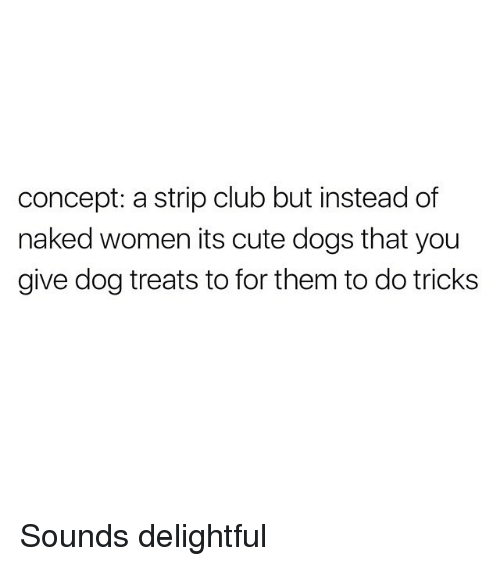 Club, Cute, and Dogs: concept: a strip club but instead of  naked women its cute dogs that you  give dog treats to for them to do tricks Sounds delightful