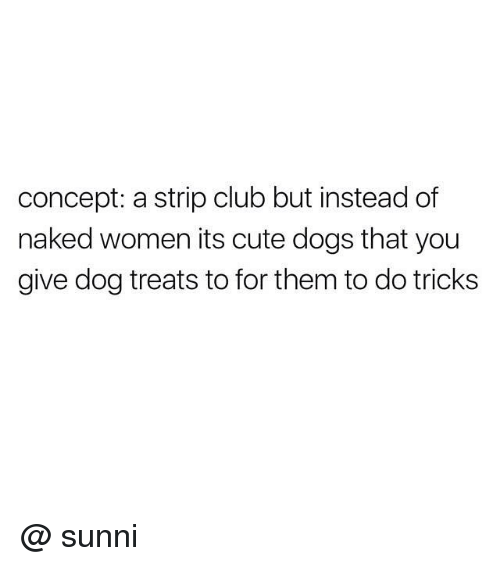 sunnies: concept: a strip club but instead of  naked women its cute dogs that you  give dog treats to for them to do tricks @ sunni