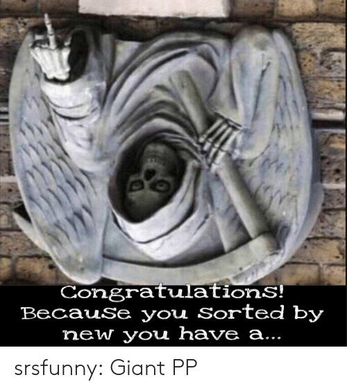 Tumblr, Blog, and Congratulations: CongratulationS!  BecauSe you Sorted by  new you have a... srsfunny:  Giant PP