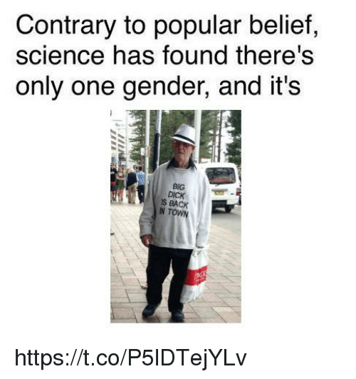 contrary: Contrary to popular belief,  science has found there's  only one gender, and it's  BIG  S BACK https://t.co/P5lDTejYLv