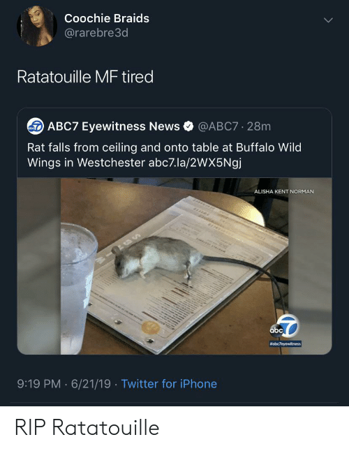 Braids: Coochie Braids  @rarebre3d  Ratatouille MF tired  ABC7 Eyewitness News  @ABC7 28m  Rat falls from ceiling and onto table at Buffalo Wild  Wings in Westchester abc7.la/2wX5Ngj  ALISHA KENT NORMAN  abc  #abc7eyewitness  9:19 PM 6/21/19 Twitter for iPhone  . RIP Ratatouille