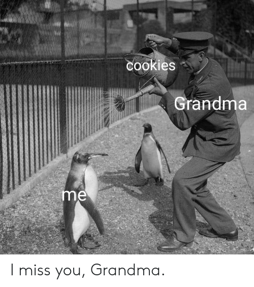 i miss you: cookies  Grandma  me I miss you, Grandma.