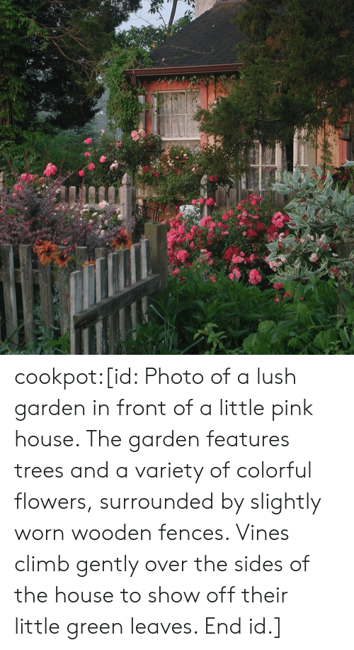 Flowers: cookpot:[id: Photo of a lush garden in front of a little pink house. The garden features trees and a variety of colorful flowers, surrounded by slightly worn wooden fences. Vines climb gently over the sides of the house to show off their little green leaves. End id.]