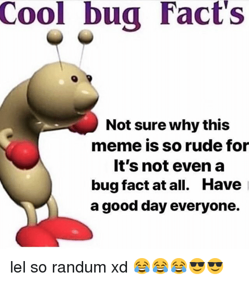 Cool Bug Facts Not Sure Why This Meme Is So Rude For Its Not Even