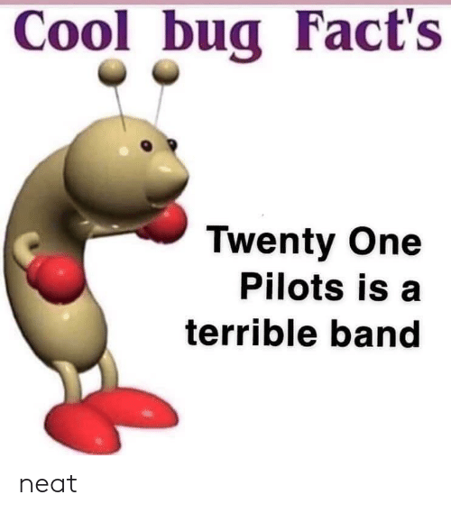 Pilots: Cool bug Fact's  Twenty One  Pilots is a  terrible band neat