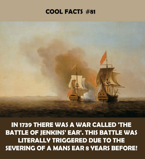 Facts, Cool, and War: COOL FACTS #81  IN 1739 THERE WAS A WAR CALLED 'THE  BATTLE OF JENKINS' EAR. THIS BATTLE WAS  LITERALLY TRIGGERED DUE TO THE  SEVERING OF A MANS EAR 8 YEARS BEFORE!