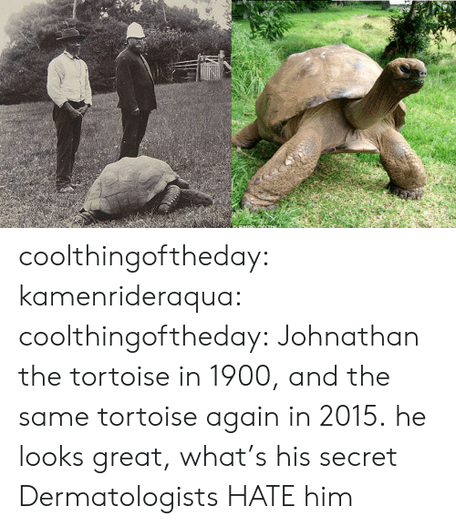 Target, Tumblr, and Blog: coolthingoftheday:  kamenrideraqua:  coolthingoftheday:  Johnathan the tortoise in 1900, and the same tortoise again in 2015.  he looks great, what's his secret  Dermatologists HATE him