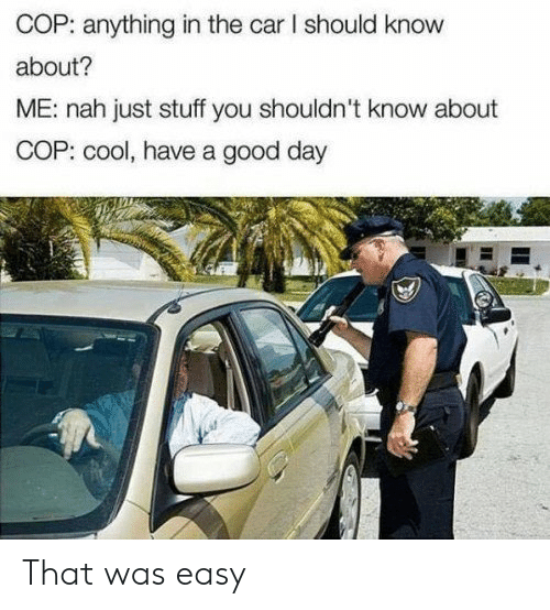 Cool, Good, and Stuff: COP: anything in the car I should know  about?  ME: nah just stuff you shouldn't know about  COP: cool, have a good day That was easy
