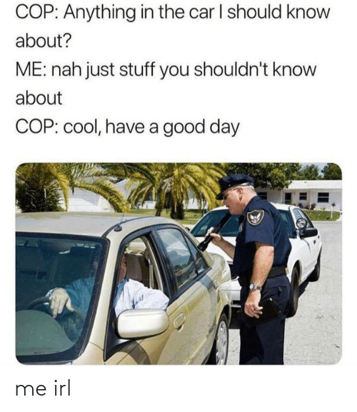 Shouldnt: COP: Anything in the car I should know  about?  ME: nah just stuff you shouldn't know  about  COP: cool, have a good day me irl