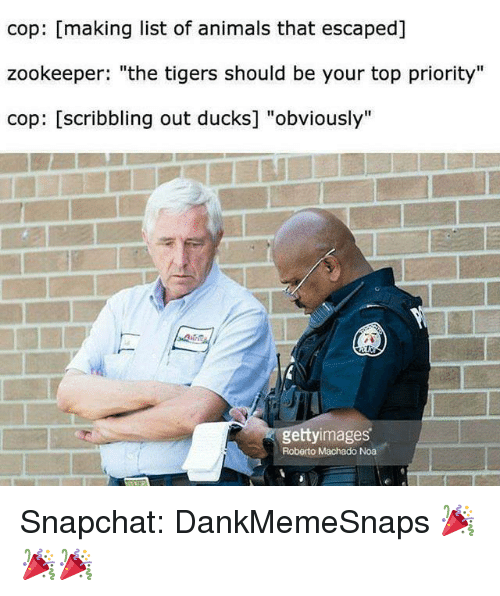 """Animals, Memes, and Snapchat: cop: [making list of animals that escaped]  zookeeper: """"the tigers should be your top priority""""  cop: [scribbling out ducks] """"obviously'""""  gettyimages  Roberto Machado Noa Snapchat: DankMemeSnaps 🎉🎉🎉"""