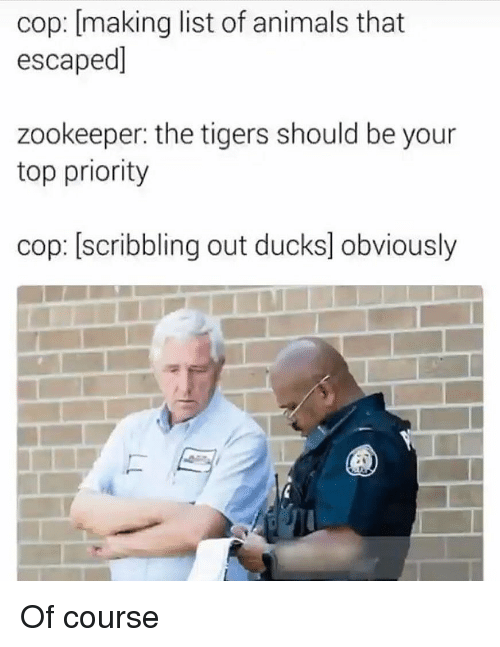 zookeeper: cop: [making list of animals that  escaped]  zookeeper: the tigers should be your  top priority  cop: [scribbling out ducks] obviously Of course