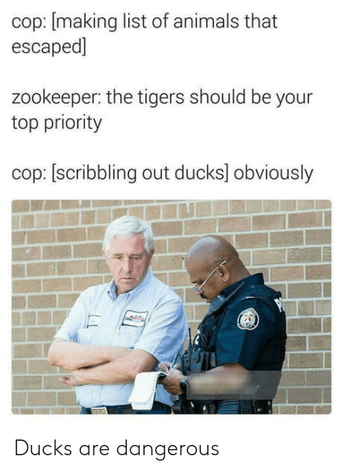 zookeeper: cop: [making list of animals that  escaped]  zookeeper: the tigers should be your  top priority  cop: [scribbling out ducks] obviously Ducks are dangerous