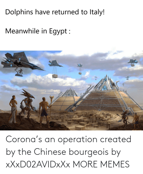Chinese: Corona's an operation created by the Chinese bourgeois by xXxD02AVIDxXx MORE MEMES