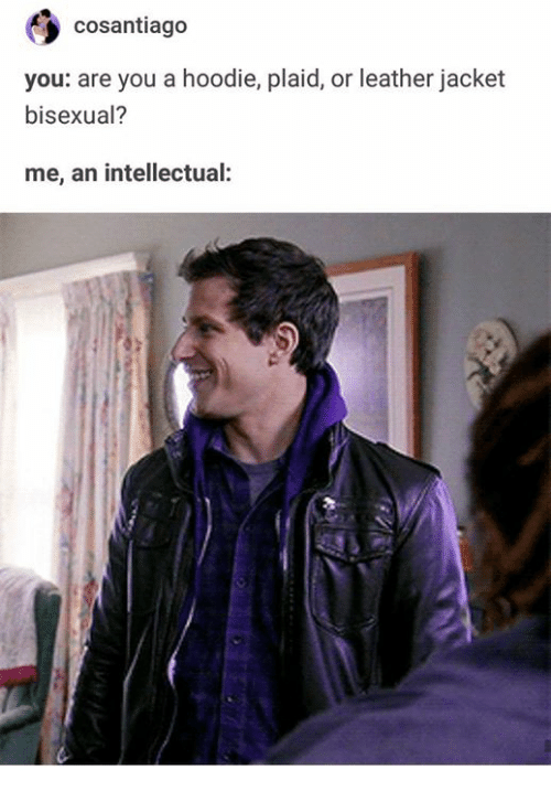 plaid: cosantiago  you: are you a hoodie, plaid, or leather jacket  bisexual?  me, an intellectual: