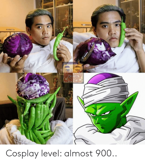Cosplay: Cosplay level: almost 900..