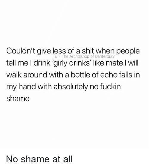 Shit, British, and Echo: Couldn't give less of a shit when people  tell me l drink 'girly drinks' like mate l will  walk around with a bottle of echo falls in  my hand with absolutely no fuckin  shame  FB The Archbishop of Banterbury No shame at all