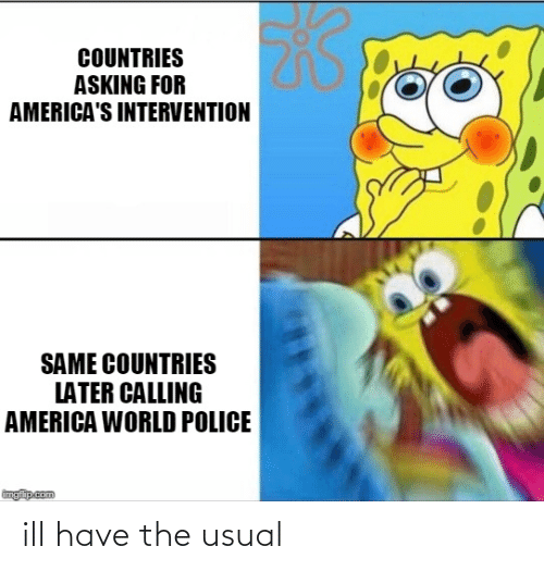 America World: COUNTRIES  ASKING FOR  AMERICA'S INTERVENTION  SAME COUNTRIES  LATER CALLING  AMERICA WORLD POLICE  imgflip.com ill have the usual