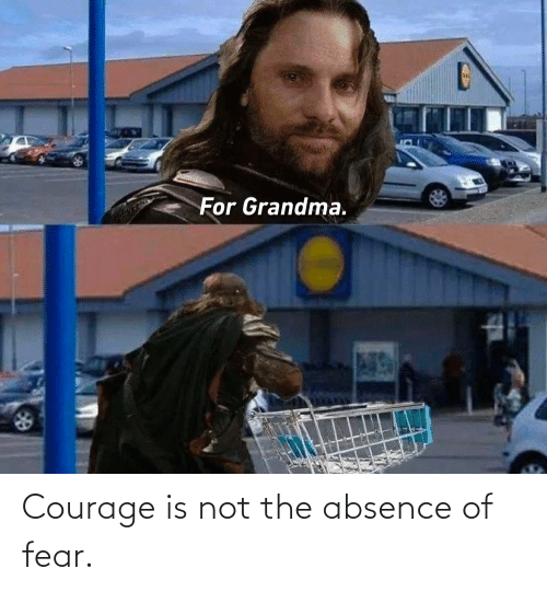 Not The: Courage is not the absence of fear.