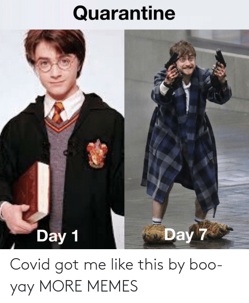 Me Like: Covid got me like this by boo-yay MORE MEMES