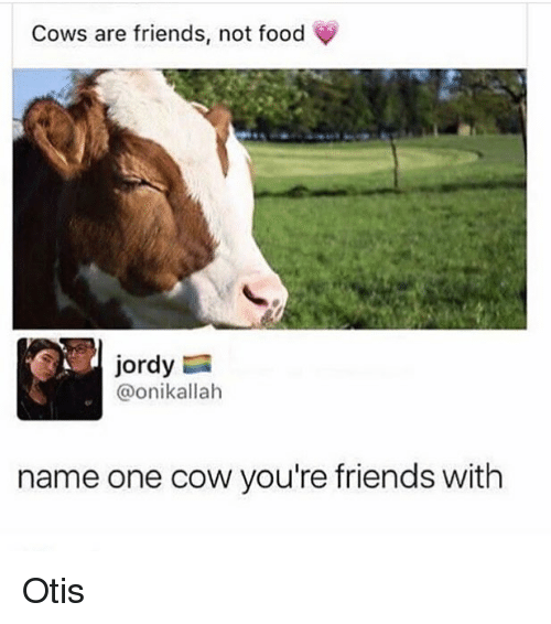 Cowe: Cows are friends, not food  jordy  @onikallah  name one cow you're friends with Otis
