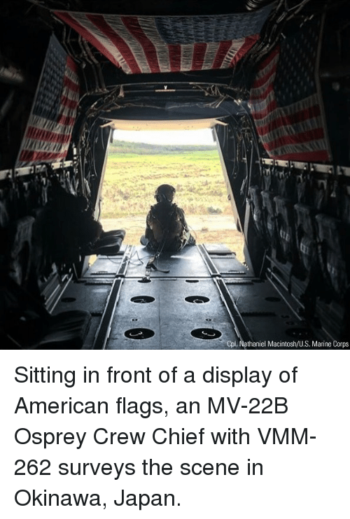 Memes, American, and Japan: Cpl. Nathaniel Macintosh/U.S. Marine Corps Sitting in front of a display of American flags, an MV-22B Osprey Crew Chief with VMM-262 surveys the scene in Okinawa, Japan.