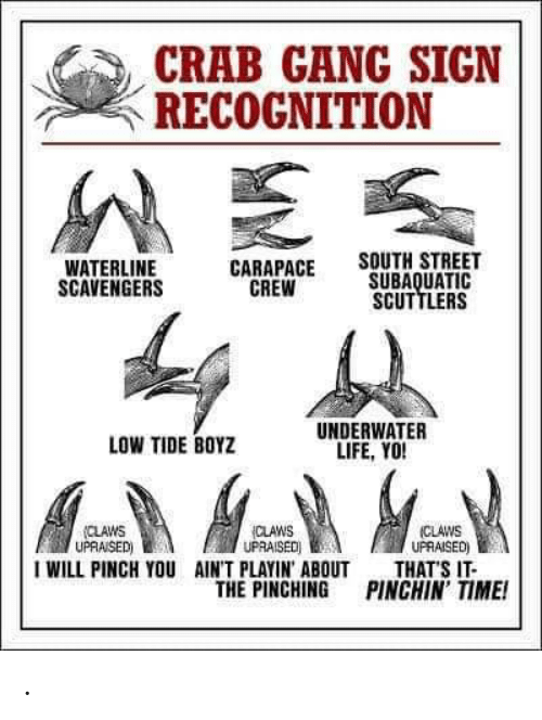 Life, Yo, and Gang: CRAB GANG SIGN  RECOGNITION  SOUTH STREET  SUBAQUATIC  SCUTTLERS  WATERLINE  SCAVENGERS  CARAPACE  CREW  UNDERWATER  LIFE, YO!  LOW TIDE BOYZ  (CLAWS  UPRAISED)  THAT'S IT-  PINCHIN' TIME!  (CLAWS  UPRAISED)  CLAWS  UPRAISED)  I WILL PINCH YOU  AIN'T PLAYIN' ABOUT  THE PINCHING .
