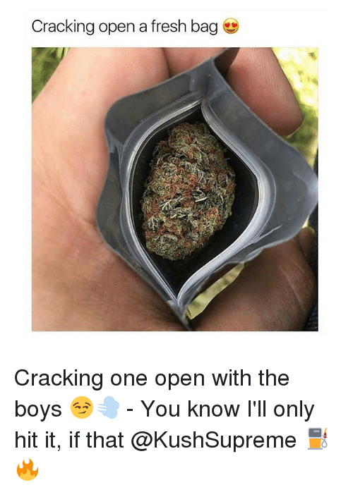 Fresh, Memes, and Boys: Cracking open a fresh bag Cracking one open with the boys 😏💨 - You know I'll only hit it, if that @KushSupreme ⛽️🔥