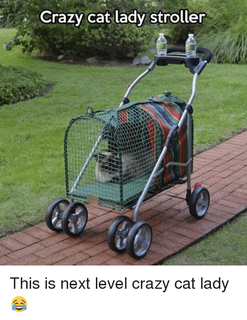 crazy cats: Crazy cat lady stroller This is next level crazy cat lady 😂