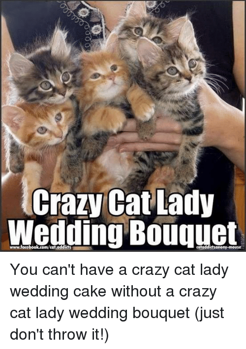 crazy cats: Crazy Cat Lady  Wedding Bouquet  www.facebook.com/cat.addicts  catoddictsanony-mouse You can't have a crazy cat lady wedding cake without a crazy cat lady wedding bouquet (just don't throw it!)