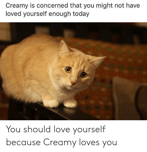 Love, Today, and You: Creamy is concerned that you might not have  loved yourself enough today You should love yourself because Creamy loves you