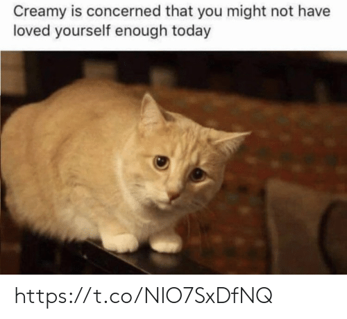 Memes, Today, and 🤖: Creamy is concerned that you might not have  loved yourself enough today https://t.co/NIO7SxDfNQ